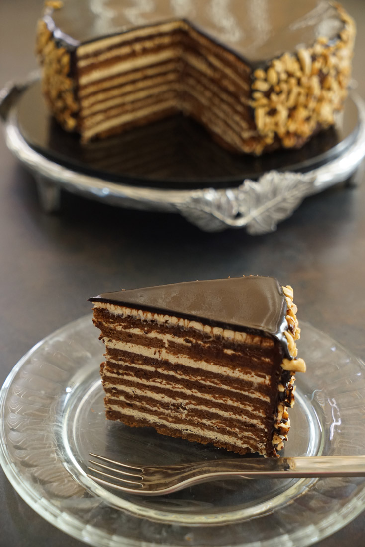 Chocolate Praline Cake